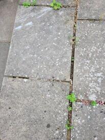 Garden labourer Dalston E8 Cash paid