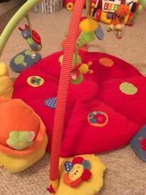 Mamas and papas lotty the ladybird playmat