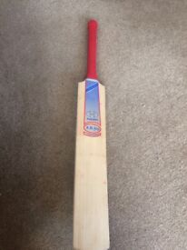 Hawk Cricket Bat, Mens X.B. 700 Limited