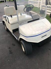 36v golf buggy