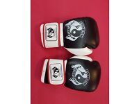 kids boxing gloves brand new