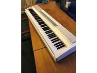 Korg SP-170S Digital Electric Piano