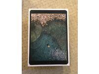 Unlocked iPad Pro 256gb WiFi cellular