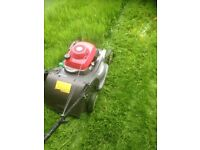 Grass mowing/ garden maintenance.