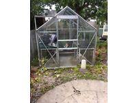Greenhouse in Giffnock