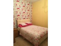 Bright double room in lovely Cottage