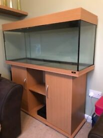 Jewell 240 fish tank with stand