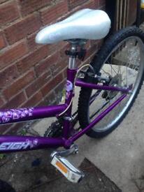 Raleigh Krush girls mountain bicycle/bike/cycle