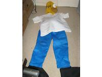 Homer Simpson fancy dress