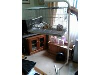 Bird cage & stand almost new