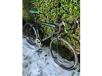 Viking Peloton Road Bike