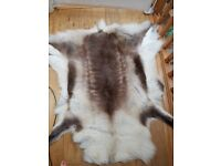 Immaculate gorgeous eco Reindeer Hide Rug, Large, highest quality luxury piece