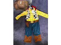 Woody fancy dress 3/4 brand new