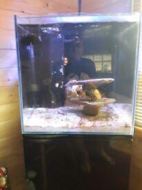 aqua one 90 litre fish tank