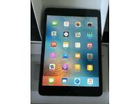 Mini iPad 1