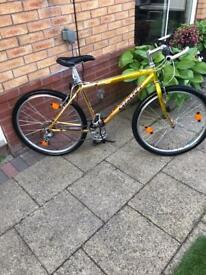 """Giant Mountain Bike 17.5"""" frame"""