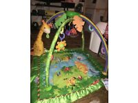 Fisher price baby gym play mat