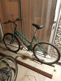 Green Ladies Bike: Apollo