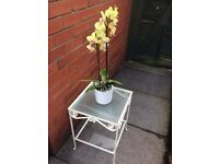 Industrial Style Garden/Conservatory Table, small no rust, vintage wrought iron, 2 glass shelves.