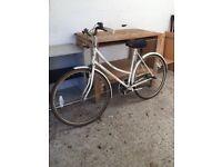 Apollo ladies girls bike