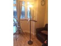 Indoor long neck lamp