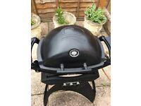 Weber Q1200 Gas BBQ