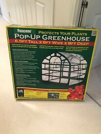 LARGE GREENHOUSE POP UP STYLE BY PARESENE( NEW STILL BOXED )