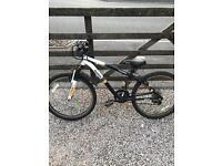 Reebok Thunder Bike