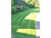 Garden landscaping & maintenance - insured, CRB checked & trading standards registered