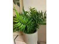 Fake plant in a pot