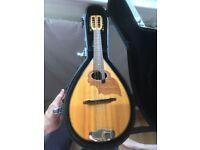 German Made Bowl Back Mandolin