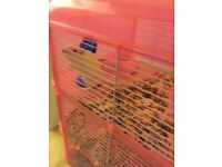 White gerbil and cage