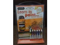 Winsor & Newton Learn to Paint Water colour Two Paintings Country Dusk and Ashdown Forest DVD gift