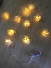 White rose fairy lights (battery powered)