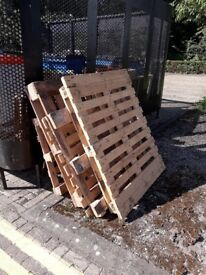 Wood pallets (FREE in exchange for cakes)