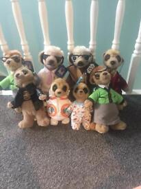 Meerkat teddy toy bundle