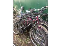 80 Ladies and men's mountain bikes £35 serviced and ready to ride