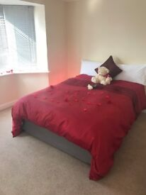 Room to let in a shared house , very clean and nice with free wifi.