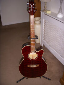 Takamine G series electro acoustic guitar.