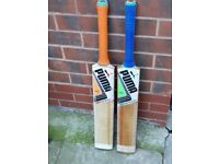 Cricket Bats for Sale – £100 Each - English Willow - Oiled and Knocked in, Ready to Play