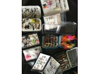 1000 various trout Flies wet/dry/lures inc boxes