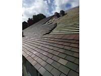 Polish roofer on price or daily rate! Best quality !