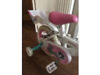 Childrens bumper my teddy bike