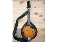 Electro acoustic Fender mandolin FM-52E