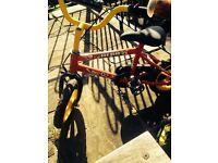 Free childrens bikes