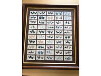 Framed players cigarette cards Chickens