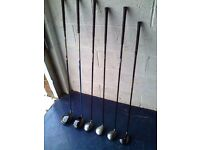 Golf Clubs (14) withTrolley