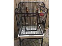 Cheap parrot / bird cage