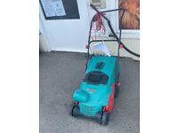 Electric Lawn Raker