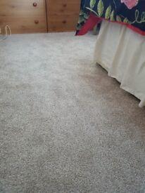 Brand New Carpet Off Cut - Cream - 6ft x 6ft